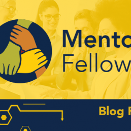 Mentor Fellows Blog Post