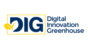 Digital Innovation Greenhouse