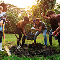 Group of young people planting in a tree