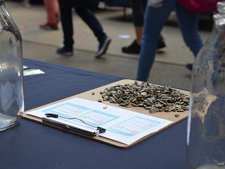A pile of sunflower seeds on a clipboard on top of a table between two empty glass jugs with students walking by